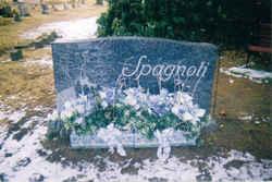 Ronald F. Spagnoli