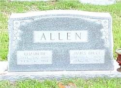 James Bruce Allen