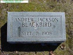 Andrew Jackson Blackbird