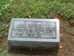 Lottie F. Whitaker