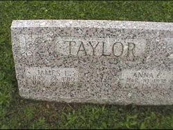 Anna C Taylor