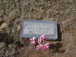 Dora Alice Alice <i>Zumwalt</i> Skinner