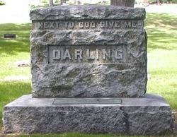Jay Norwood Darling