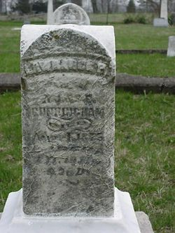 Lawrence P Cunningham