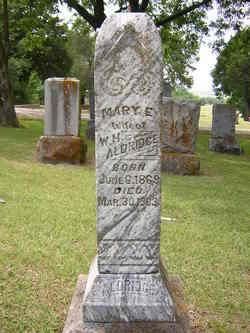 Mary Elizabeth <i>Michaels</i> Aldridge