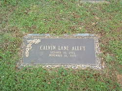Calvin Lane Alley