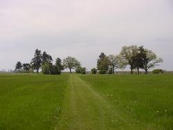 Ellington Cemetery