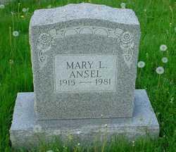 Mary L Ansel