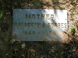 Elizabeth A Forbes