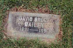 David Bruce Bailey