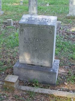 A E Adams