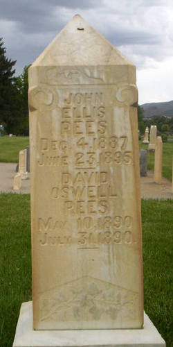 David Oswell Rees