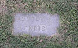 Audrey L Adkins