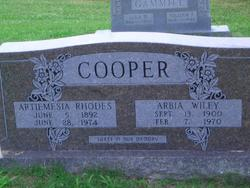 Arbia Wiley Cooper