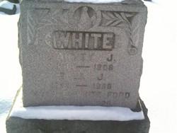 Unknown <i>White</i> Ford