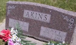 Pete J Akins