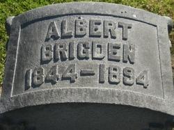 Albert Brigden