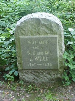William Bradford D'Wolf, III
