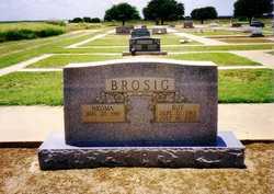 Roy J. Brosig