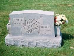Bessie Opal <i>Chipps</i> Cavins