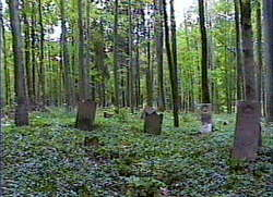 Reep Cemetery