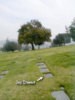 Jay Stewart