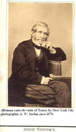 Dr John Torrey