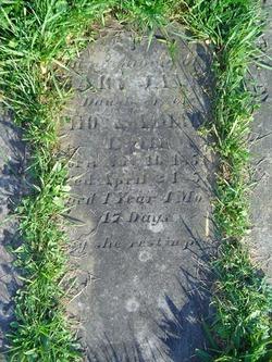 Mary Jane Adams