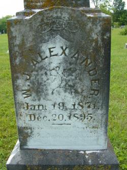 William J Alexander