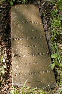 Mary Sarah <i>Leviston</i> Cully