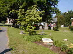 Old Presbyterian Graveyard