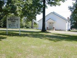 Oak Forest Cemetery #1