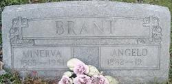 Minerva <i>Haun</i> Brant