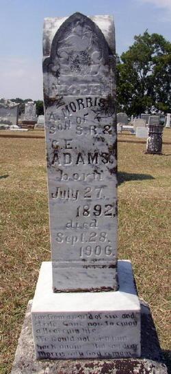 A. Morris Adams