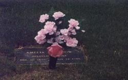 Amelia Evelyn Mollie <i>Selzer</i> Withrow