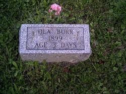 Ola Burr
