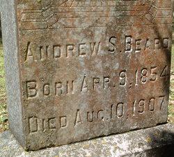 Andrew S Beard