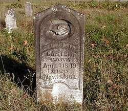 George M. Carter