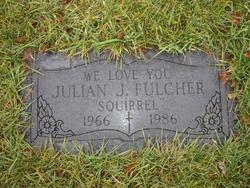 Julian J Fulcher