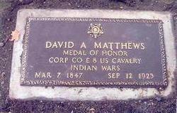 David A. Matthews