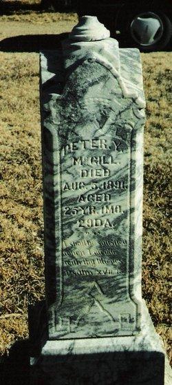 Peter Y. McGill