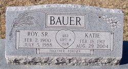 Katie C. <i>Gipson</i> Bauer