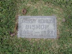 Albert Hensley Bishop