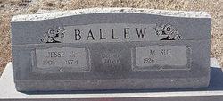 M Sue Ballew