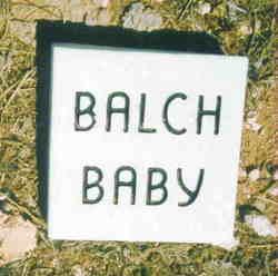 Baby Balch