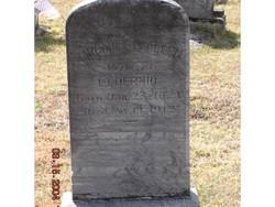 Margaret Elizabeth <i>Allen</i> Dermid