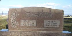 Elizabeth Libby <i>Jordan</i> Hammon