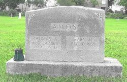 Thomas A. Amos