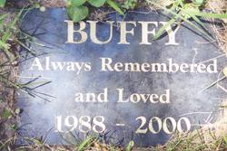 Buffy - Beloved Pet