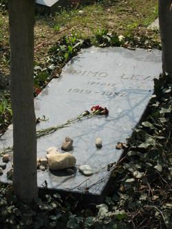 Primo Michele Levi
